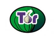 Белорусское правительство объяснило причину блокировки браузера Tor