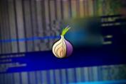 Известный брокер уязвимостей готов заплатить 1 млн долларов за эксплоиты для Tor