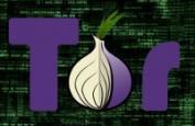 В Беларуси заблокировали Tor