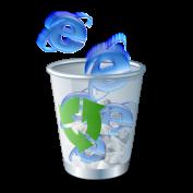 Райан Гэвин: «Я должен уничтожить Internet Explorer 6»
