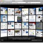 Выпущено обновление для браузера Safari 4.0.5